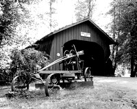 Drift Creek Bridge covered nature foliage black and white